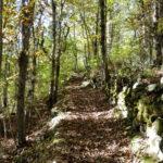 L'autunno in Garfagnana